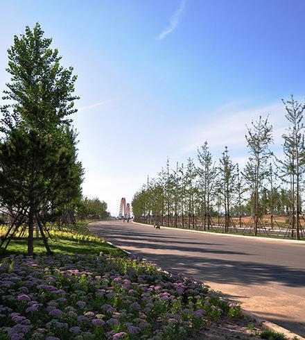 河北张家口新城中央景观大道