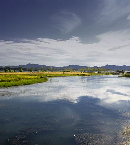 湖北襄阳月亮湾城市湿地公园