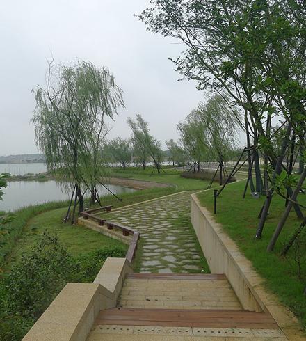 湖南长沙斑马湖湿地公园