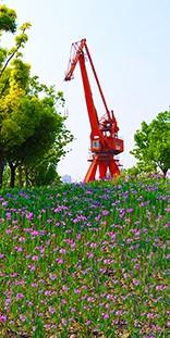 2010上海世博会世博公园